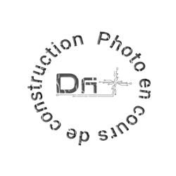 Carte DLT2 Alcatel-Lucent OmniPCX OXO - OXE
